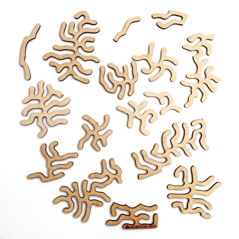 Entropy puzzelstukjes
